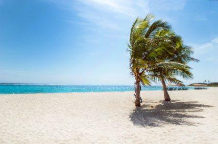beach-blue-sky-carribean-1049298