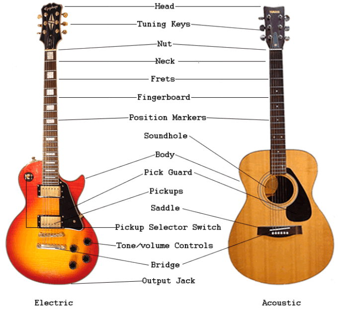An Overview Of Guitar Parts Electric Acoustic Guitar Anatomy