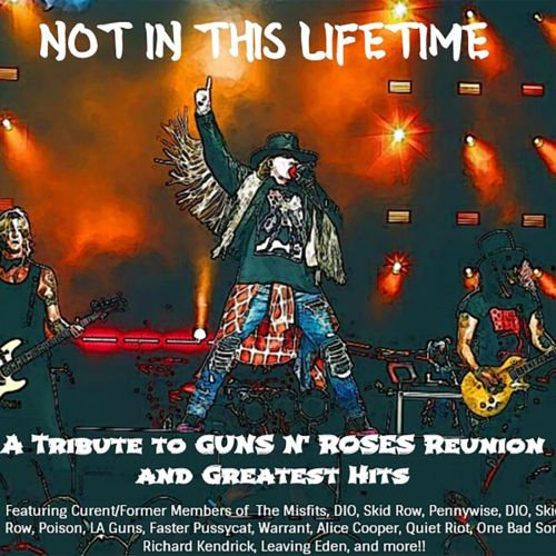 Various Artists - Not In This Lifetime: A Tribute To Guns N Roses' Reunion & Greatest Hits (2018)