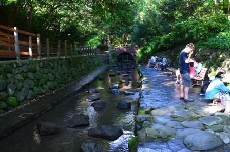 柿田川公園 湧き水広場