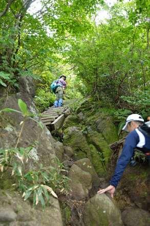荒島岳 登山 作り付けの階段