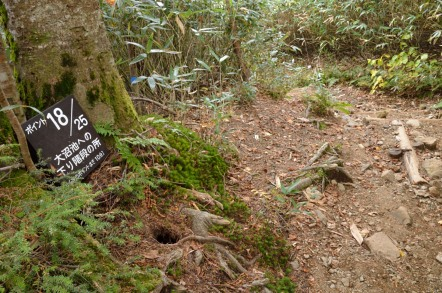 志賀高原 池めぐり 大沼池 階段