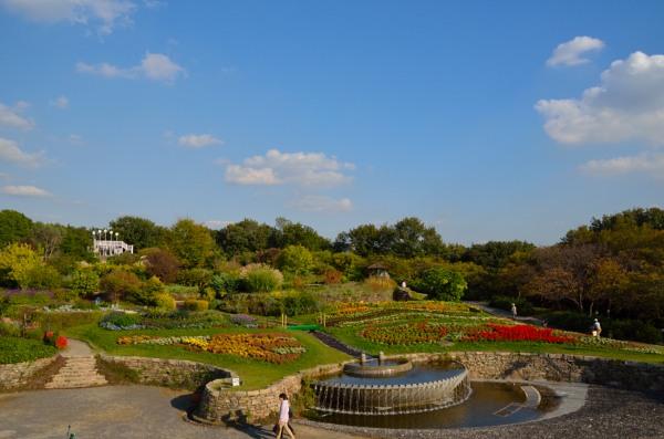 東山動植物園 お花畑