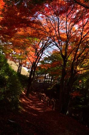 足助城 登山 紅葉