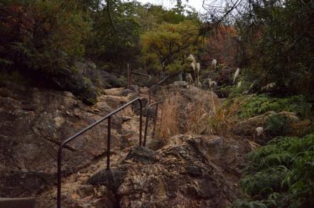 寂光院から継鹿尾山の三角点までの登山道