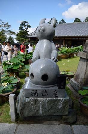 三室戸寺 狛兎