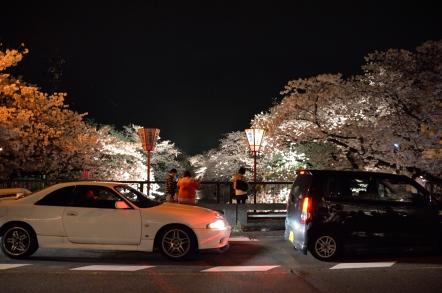 五条川桜祭り ライトアップ