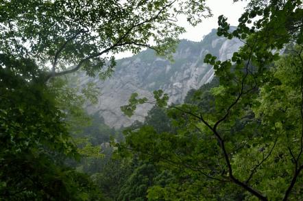 御在所岳 裏登山道