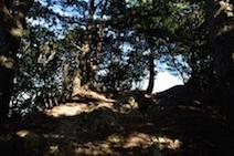 三方山 登山道