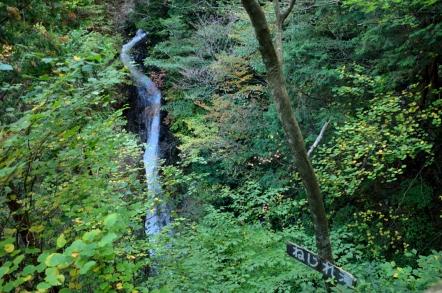 小秀山 二の谷ルート ねじれ滝