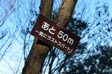 猿啄城展望台 登山道