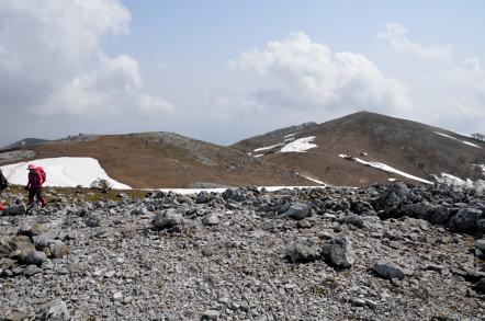 霊仙山 最高点
