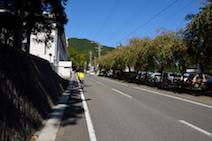椿大神社 椿会館
