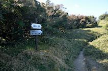 入道ヶ岳 井戸谷コース