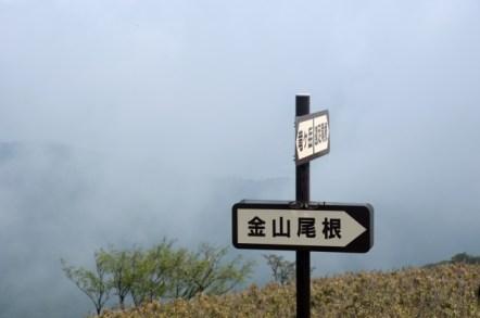 竜ヶ岳 遠足尾根・金山尾根分岐