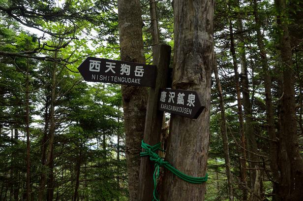 彼尾ノ峰分岐 天狗岳 唐沢鉱泉西尾根コース