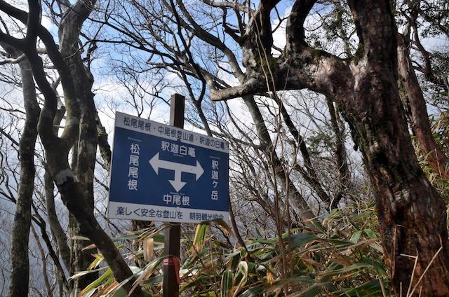 釈迦ヶ岳 中尾根新道 鳴滝コバ〜大蔭のガレ 松尾尾根合流点