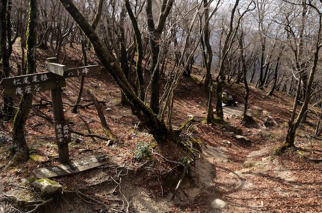 釈迦ヶ岳 県境稜線登山道 山頂〜猫岳