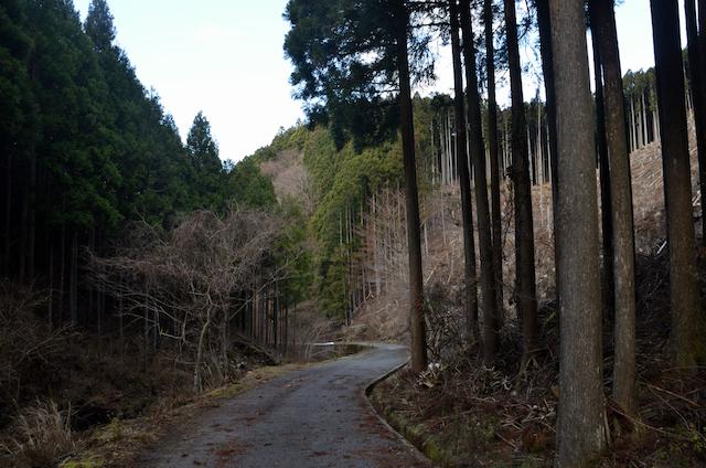 三峰山 不動滝ルート
