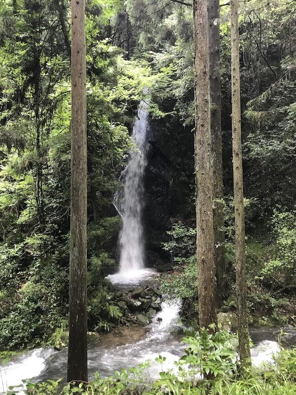 納古山 木和谷林道 親猿の滝