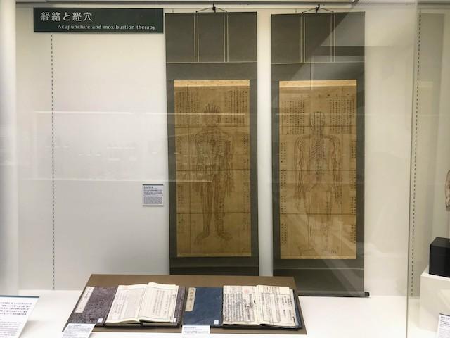 内藤記念くすり博物館 経絡・経穴