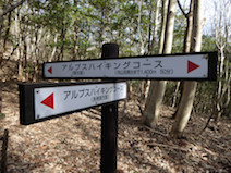 向山 登山道