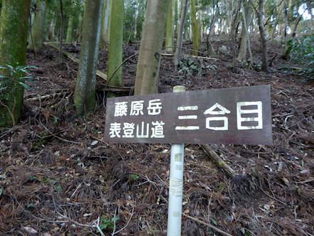 表登山道(大貝戸道) 3合目