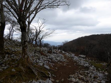 藤原岳 下山