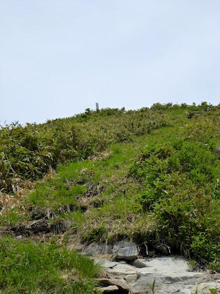 大日ヶ岳 桧峠コース 登山道