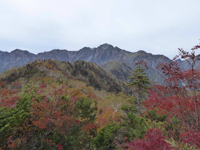 遠見尾根 五竜岳方面