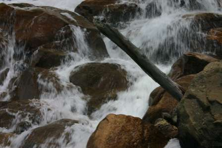 Alluvial Fan Rocky Mountain National Park (RMNP)
