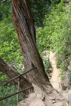 Glenwood Canyon Colorado, Hanging Lake Trail