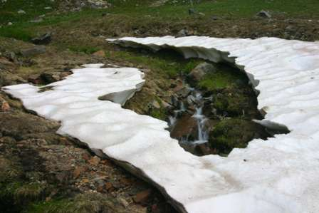 melting snow shelf, san juan mountains