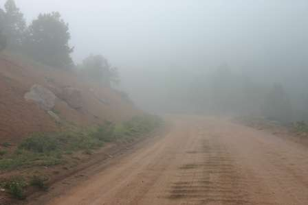 Fog, gold camp road victor cripple creek colorado