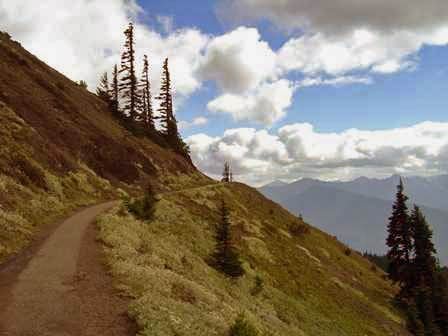 Hurricane Hill Trail, Olympic National Park