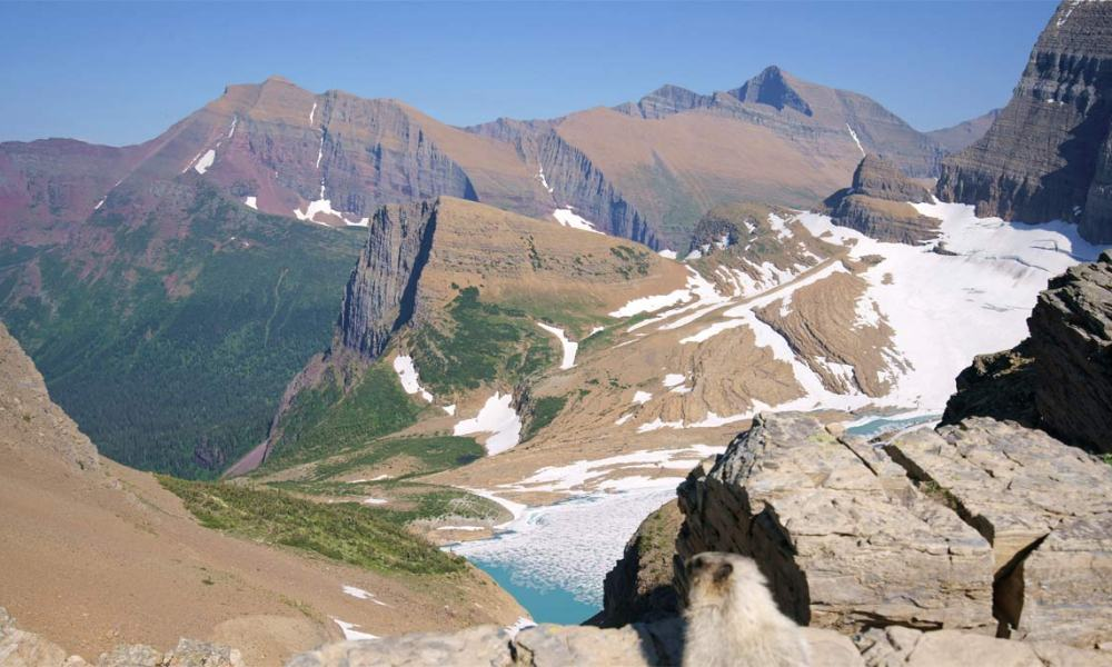 d498f5d92ded Seeing an actual glacier up-close in Glacier National Park requires some  effort. If you re hiking the popular Highline Trail