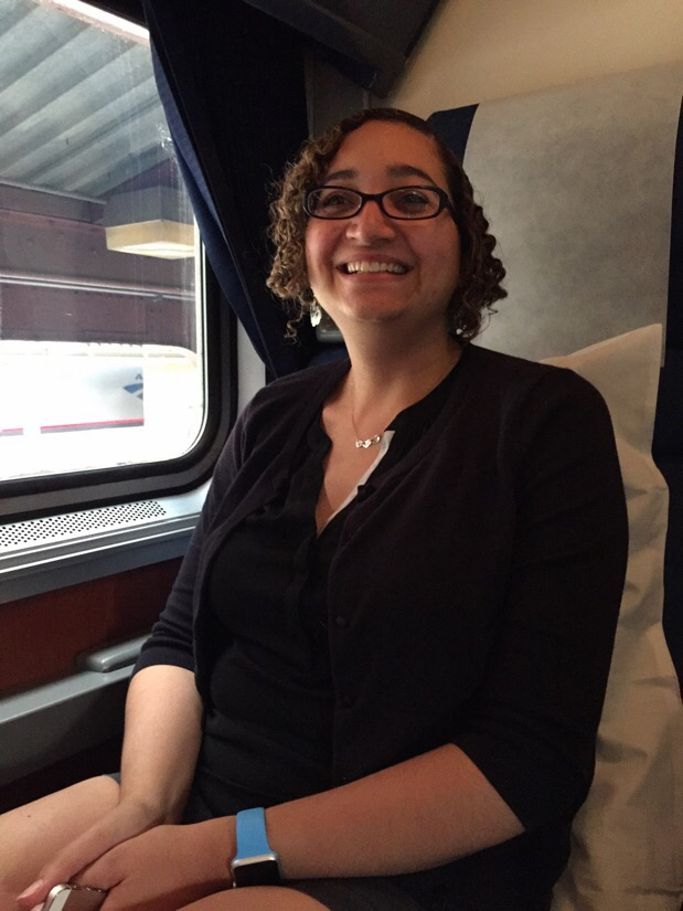 riding the amtrak capitol limited from washington dc to chicago