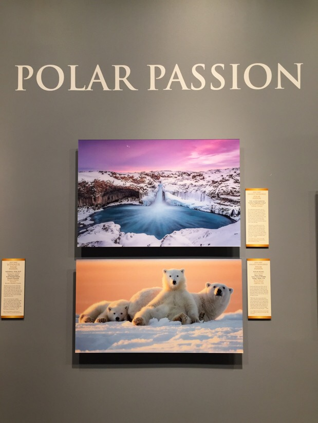 natures best photography - best of the best  photography exhibit at the natural history museum in washington dc