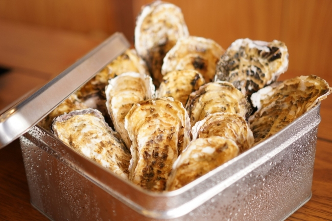 かき殻荘の牡蠣