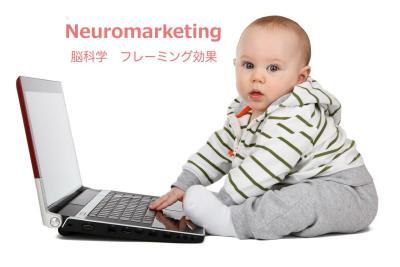 10分でわかる脳科学マーケティング「フレーミング効果」|【起業するには,起業失敗,学ぶ】