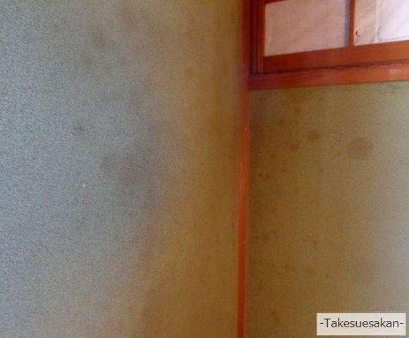 カビの生えた塗り壁