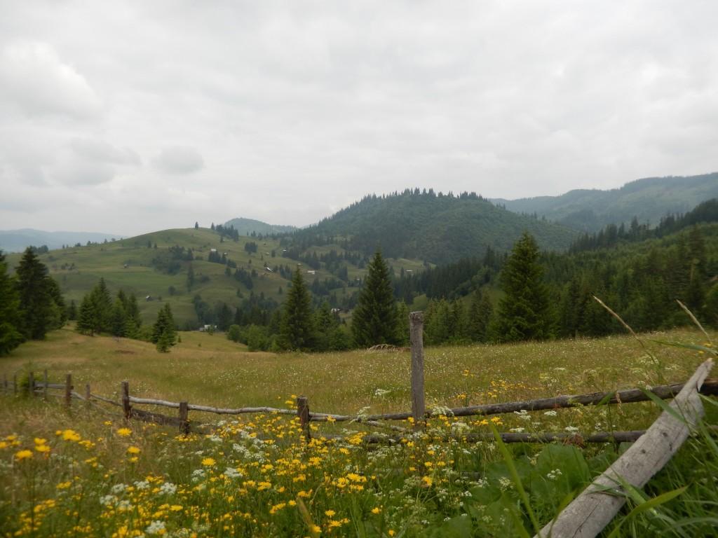 Din camping se organizează excursii la mânăstiri, la stână, la atelierul de ceramică neagră de la Marginea, drumeții montane, plimbări cu căruța trasă de cai