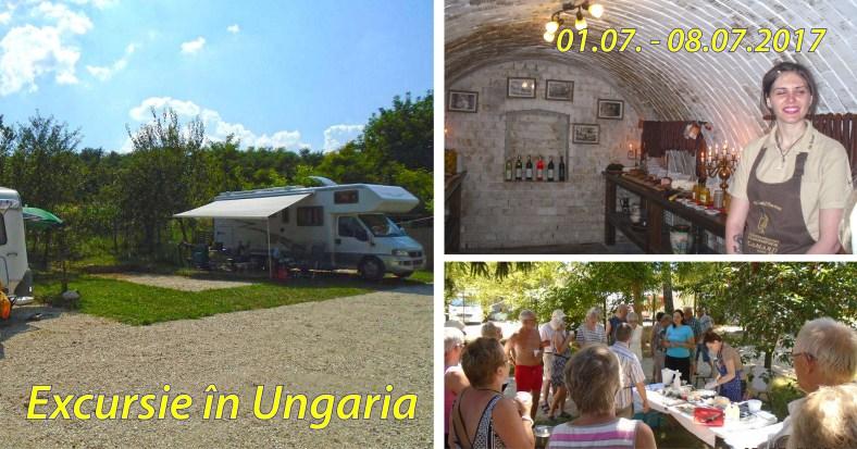 reclama_ungaria2