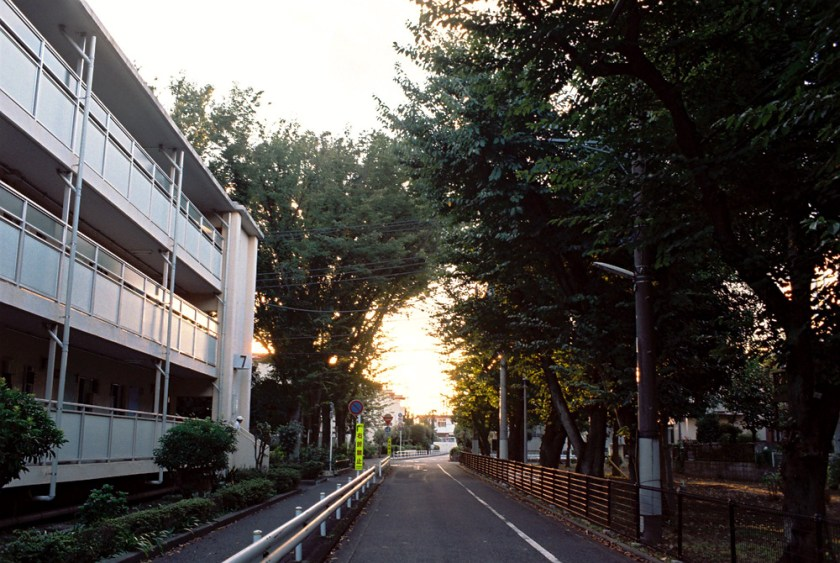 untitled_images8_30