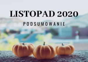 Listopad 2020 – podsumowanie