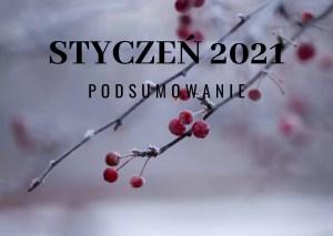 Styczeń 2021 – podsumowanie
