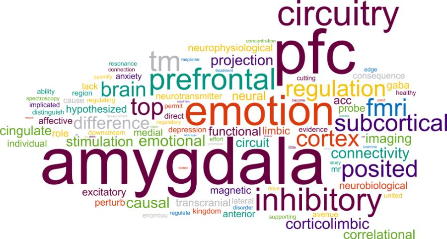 train your prefrontal cortex