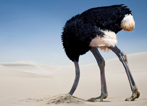 The Ostrich Effect Fallacy