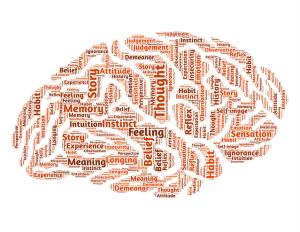 inside our brain