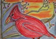 cardinal- Copy